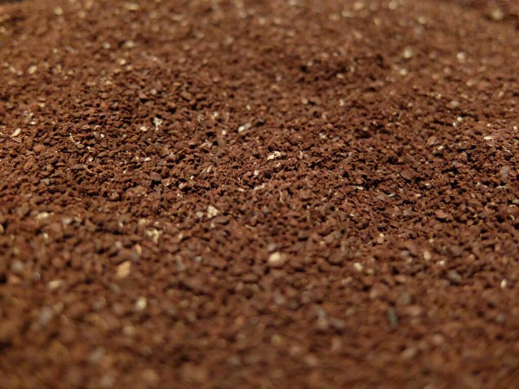ブラジル 手摘み完熟豆 -2