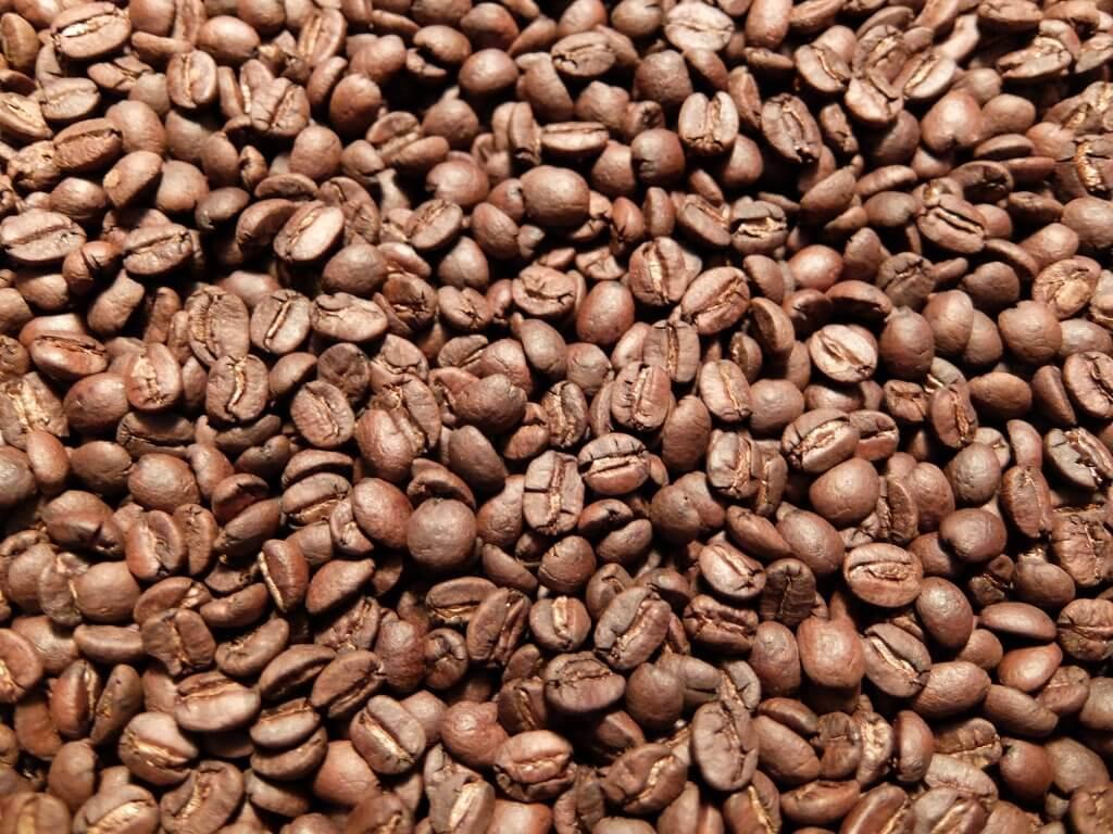 ブラジル 手摘み完熟豆 セミウォッシュド又はパルプドナチュラル